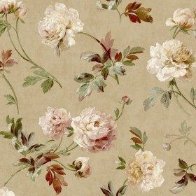 GX8153 Rusty Peach Whitworth Peony Wallpaper - Yard