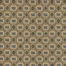 Haberdasher IO Birch Kasmir Fabric