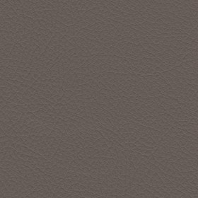 Nuance 2454 Fawn Fabric