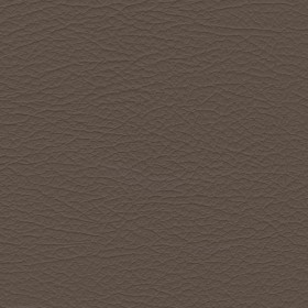 Nuance 2463 Med. Neutral Fabric