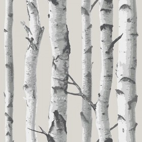 NU1650 Grey White Birch Tree Peel & Stick Wallpaper - Yard