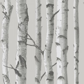 NU1694 Mountain Birch Grey Peel and Stick Wallpaper