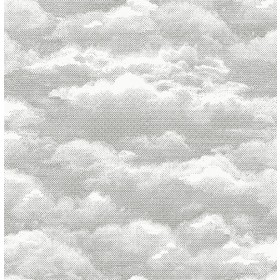 Atmosphere Grey Clouds Peel and Stick Wallpaper