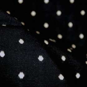 D2579 Saybrook Black Polka Dot Embroidered Fabric