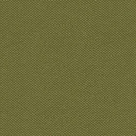 Silvertex 8820 Basil Fabric