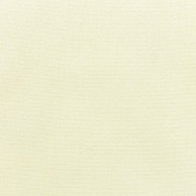 Sunbr Furn Solid Canvas 5404 Natural Fabric
