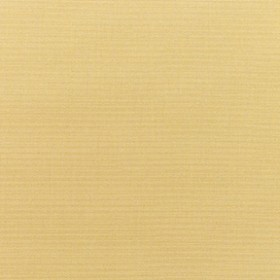 Sunbr Furn Solid Canvas 5414 Wheat Fabric