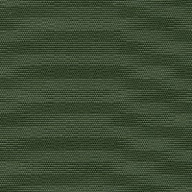 Sunbr Furn Solid Canvas 5421 Palm Fabric