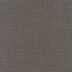 Sunbr Furn Solid Canvas 5489 Coal Fabric