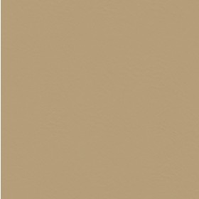 Surfside SF91 Tan Fabric
