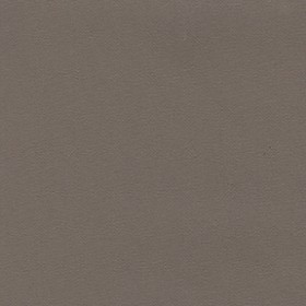 Top Gun 459 Taupe Fabric