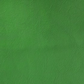 Universal French Green Burch Fabric