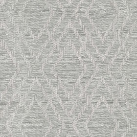 Dana Silver Regal Fabric