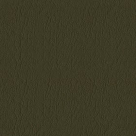 Whisper Vinyl 2129 Forest Fabric