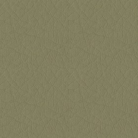 Whisper Vinyl 2131 Green Tea Fabric