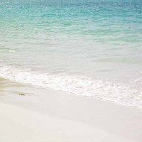 Playa Aqua Tropical Sea Shore Wallpaper