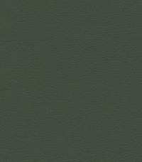 Ultraleather 4352 Loden Fabric